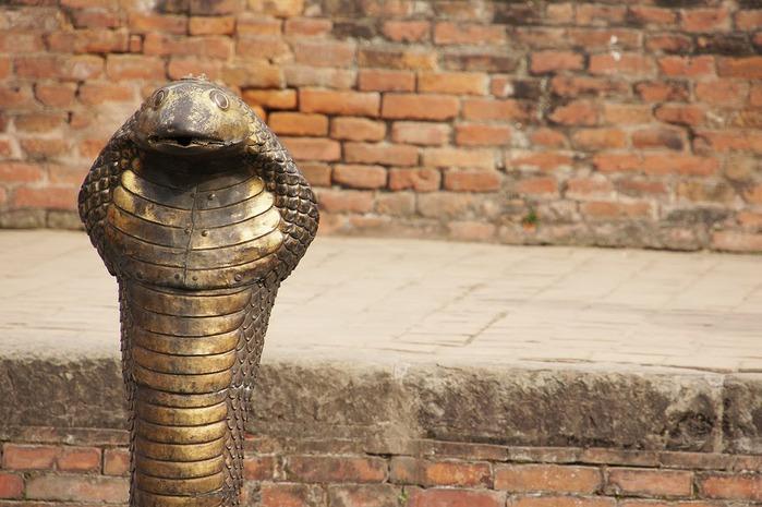 Бхактапур -«город верующих» 70025