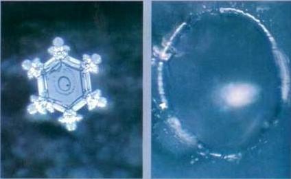 молекула воды под микроскопом фото