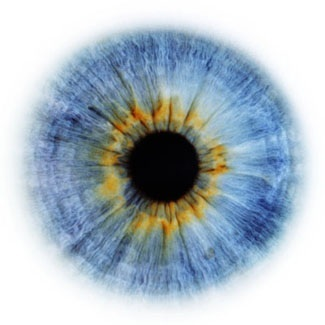 Это не просто зелёные, серые или карие глаза.