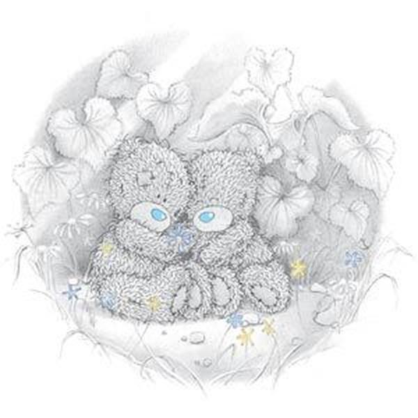 и рисунки Мишки Тедди. (20