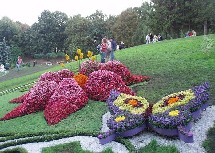 Дизайн клумб из цветов