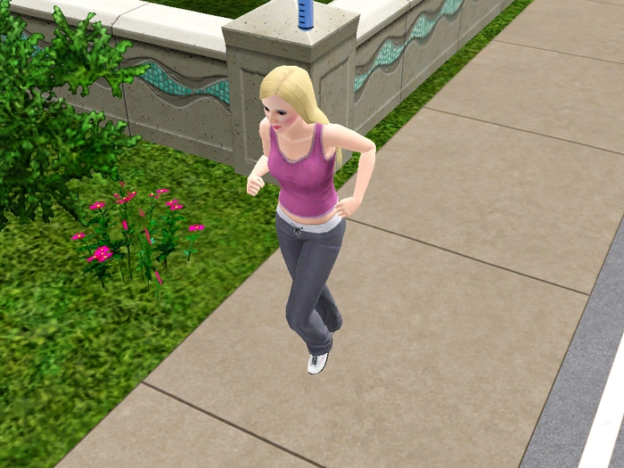 The Sims 2 Увлечение Коды