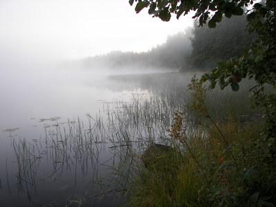 http://img0.liveinternet.ru/images/attach/c/2/64/64/64064161_2.jpg