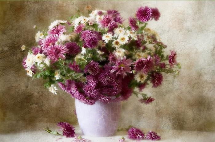 Последние цветы осени.  Естественный свет.  Купить фото с кодом 060476 в высоком разрешении.
