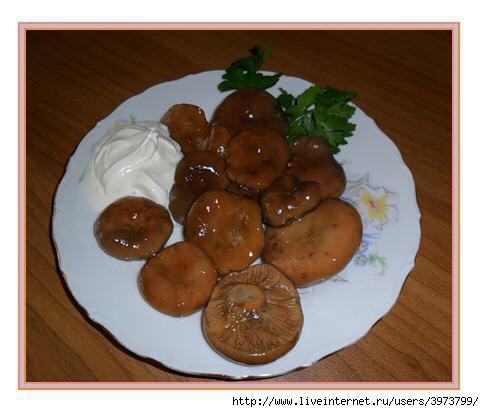 соленые рыжики на зиму рецепты с фото