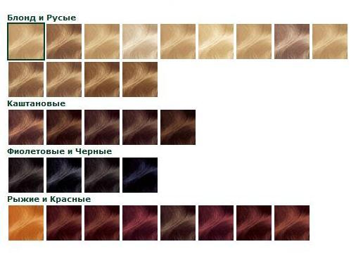 Цвет красок для волос фото и названия