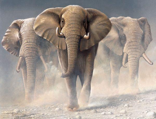 Вам расскажу я, как живут слоны В лесах далёкого индийского Ассама**.  Поднять работу в данном разделе.