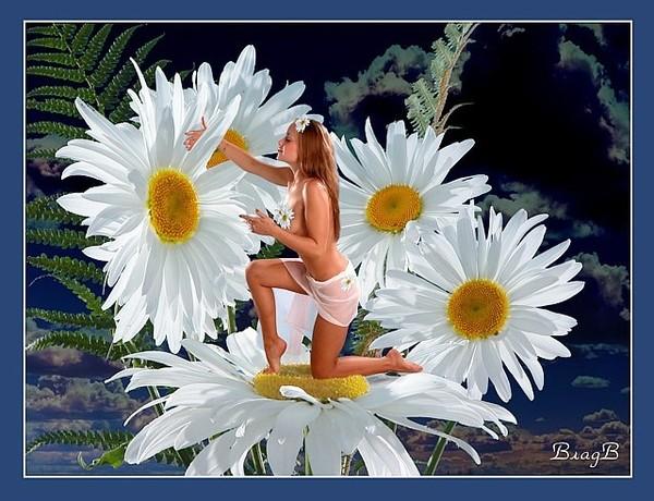Цветы из мастики как делать