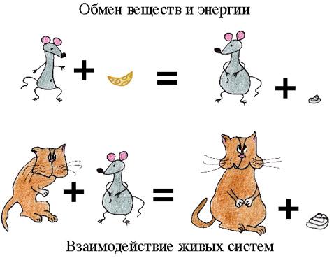 http://img0.liveinternet.ru/images/attach/c/2/65/37/65037924_1.jpg