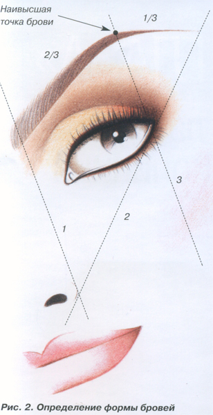 Продолговатую форму лица можно скорректировать, чуть больше, чем обычно, приподняв внешний угол брови, а...