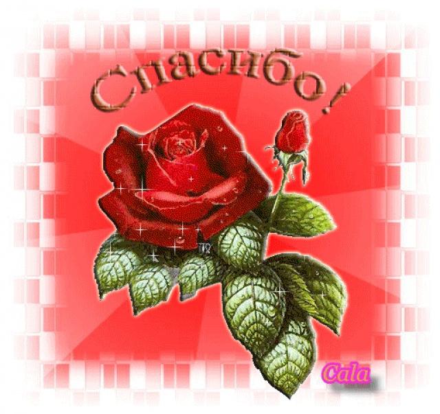 Поздравляем С Днем Рождения Анжелику Николаевну и Татьяну Георгиевну! 65676245_9b8b0b7d7f07981d236afe995c3d7a22_f519ce22fbba052fe65f2d42c9bcc4d9