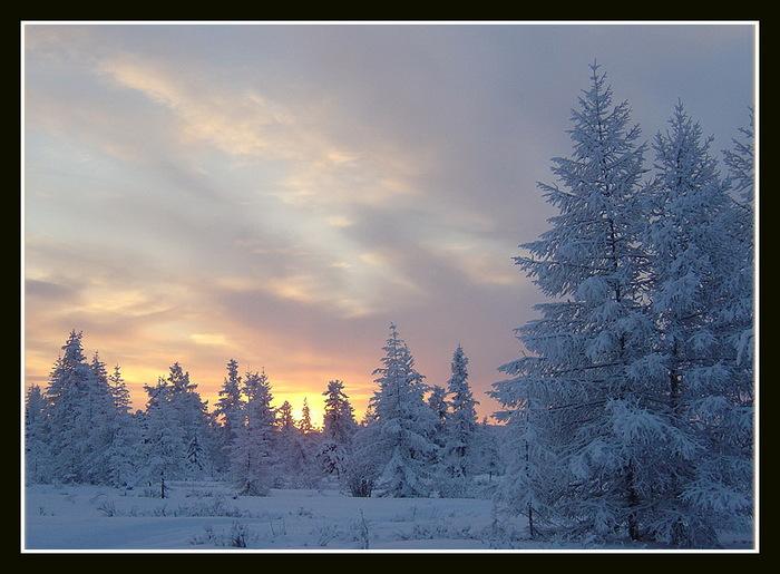 Название фотографии: Зимний пейзаж Имя автора.