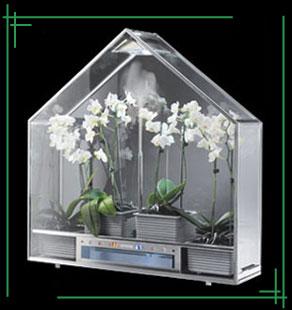 Парник для орхидеи