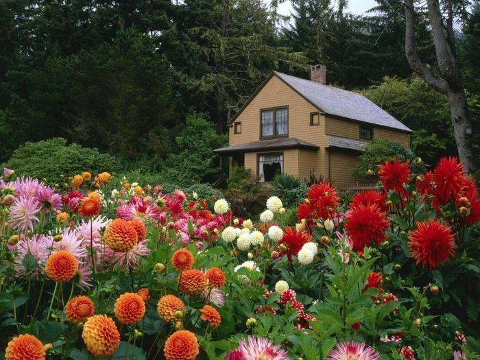 Прекрасные сады (36 фото