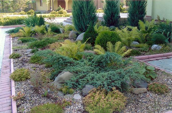 Идеи для садовых участков.