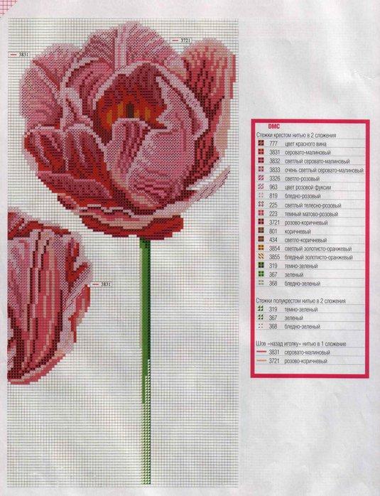 Тюльпаны всем любителям вышивки.  Со схемой.  Всем приятной рабочей недели и больших побед!