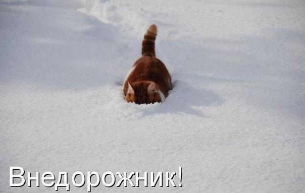 ...http://vkontakte.ru/club10609010 8025-9466987 ratatiu1 Skype.