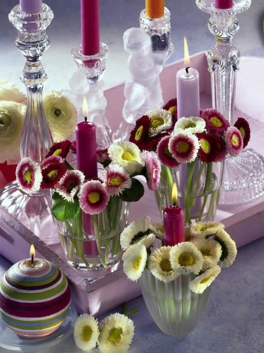 Весенние цветы в интерьере. МАРГАРИТКИ. Комментарии : Дневники на КП