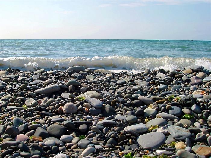 Дикий пляж в сочи фото 1