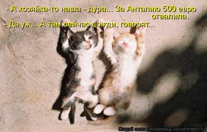 http://img0.liveinternet.ru/images/attach/c/2/70/908/70908129_1298122224_1_30.jpg