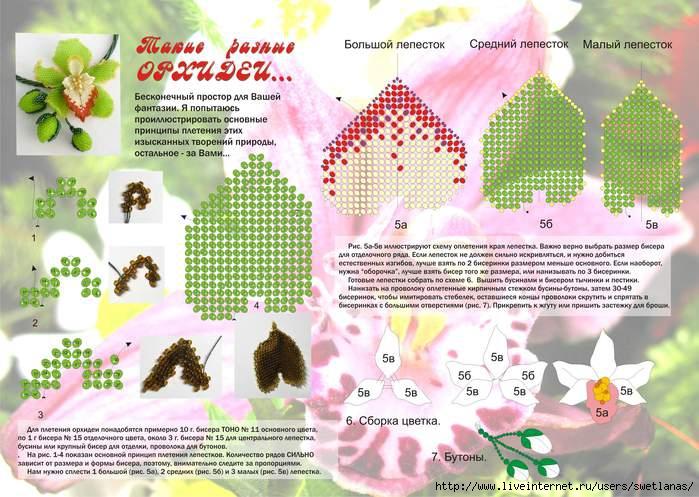 Орхидеи из бисера.  Это цитата сообщения.  Прочитать целиком.