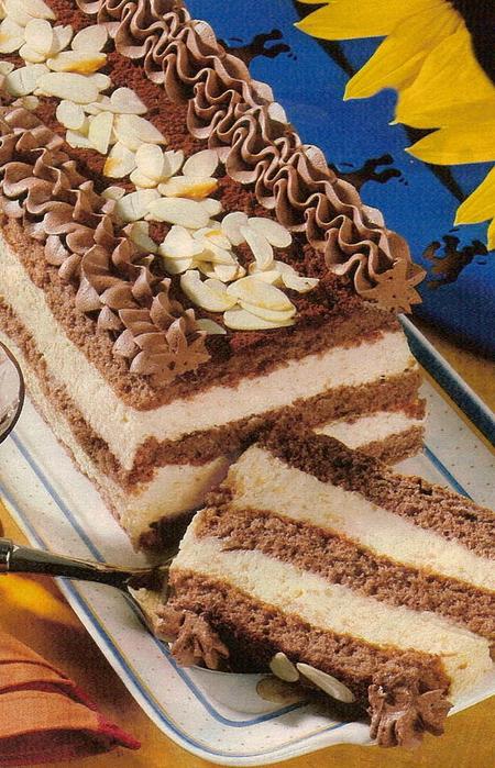 шоколадный бисквитный квадратный торт рецепт с фото-хв7