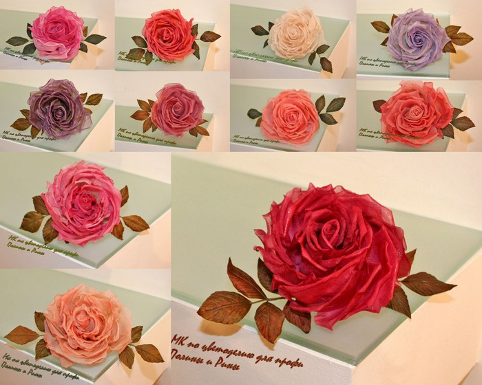Японцы вырастили синие розы