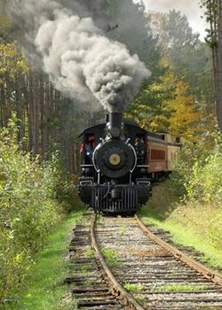 1248987020_train1 (250x350, 126Kb)