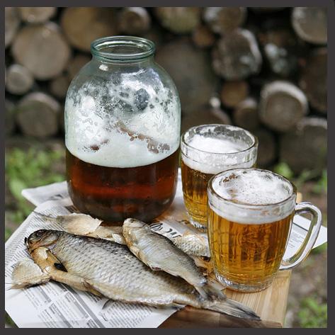 пиво-таранка! (473x473, 137Kb)