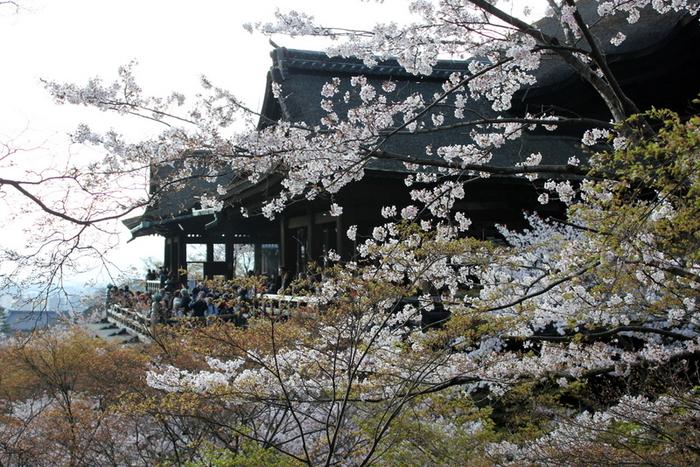 Киёмидзу-дэра - храм для всех. 24504