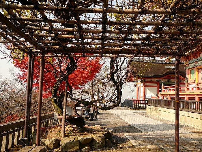 Киёмидзу-дэра - храм для всех. 77260