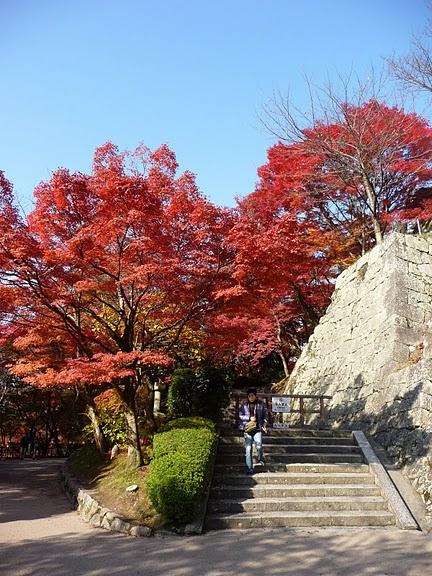 Киёмидзу-дэра - храм для всех. 70558