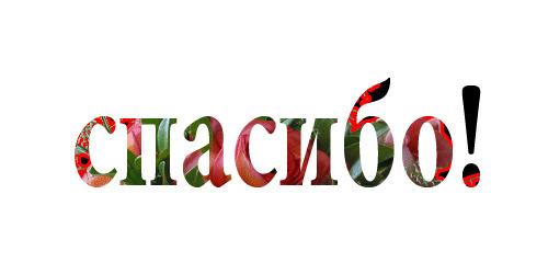 пїЅпїЅпїЅпїЅпїЅпїЅпїЅ! copy (500x250, 24Kb)