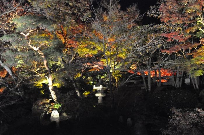 Киёмидзу-дэра - храм для всех. 43654