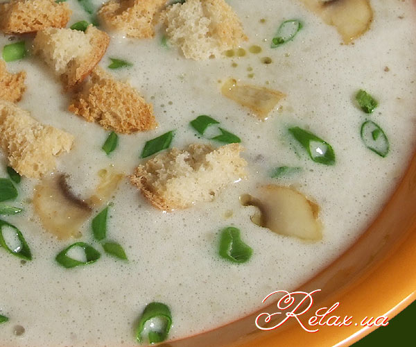 3688700_cream-of-mushroom-soup-zoom (600x500, 69Kb)