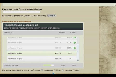 2447247_video (480x320, 49Kb)