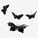 4303289_Avatar_(480) (150x150, 24Kb)