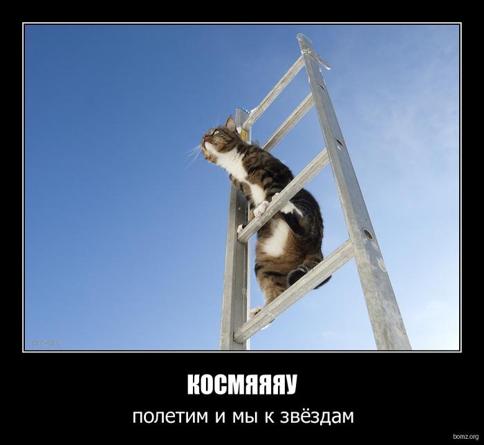 http://img0.liveinternet.ru/images/attach/c/2/73/310/73310810_kisa_mechtatel.jpg