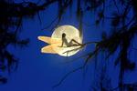 ������ Fairytale Moon (700x466, 108Kb)