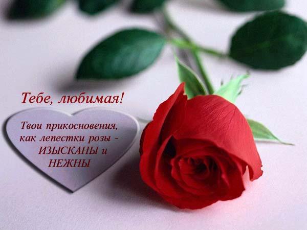 Красивые стихи про любовь