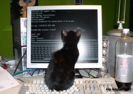 programmist (430x303, 107Kb)