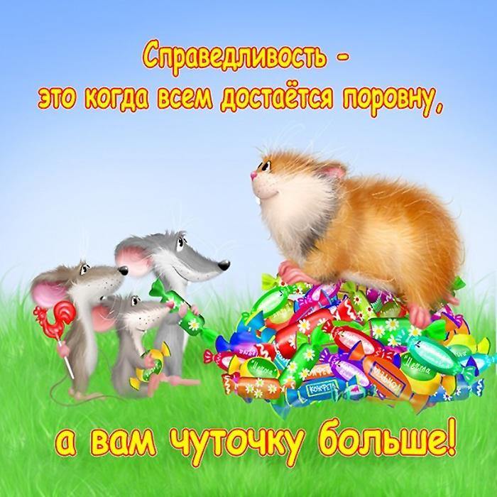 Прикольные истории о котах - Страница 3 73352376_5851