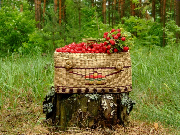 4278666_Food_Fruits_and_Berryes_Basket_with_wild_strawberry_021289_ (700x525, 360Kb)