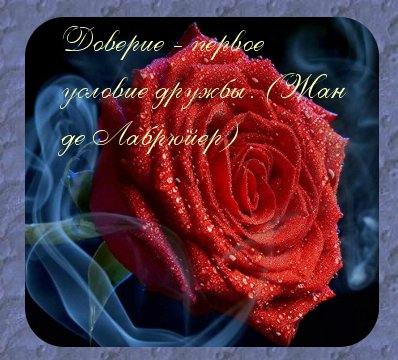 аватарки розы: