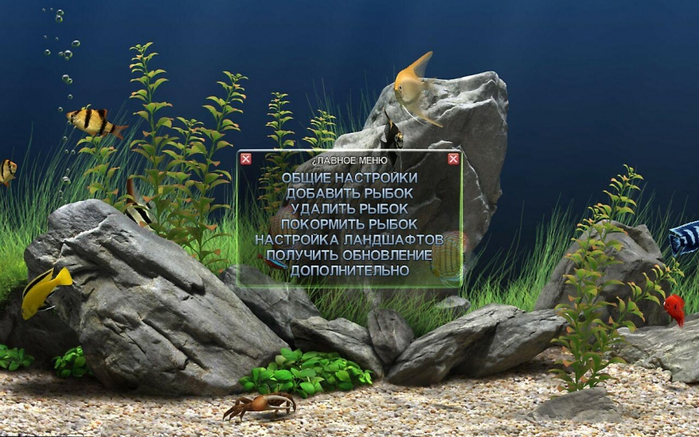 3424885_dream_aquarium_screensaver_124_x32_x64_tixaja_ustanovka_937937 (700x437, 270Kb)