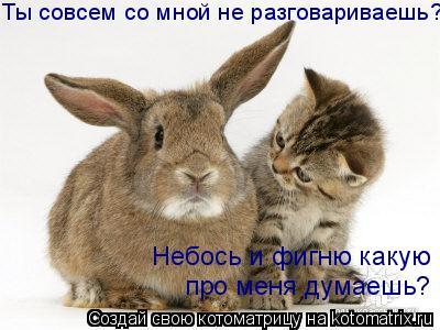 kotomatrix_54 (400x300, 29Kb)