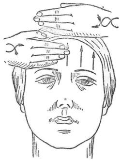 Семинары lebel восстановление волос в москве в долорес