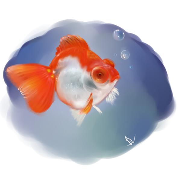 рыба (604x587, 165Kb)