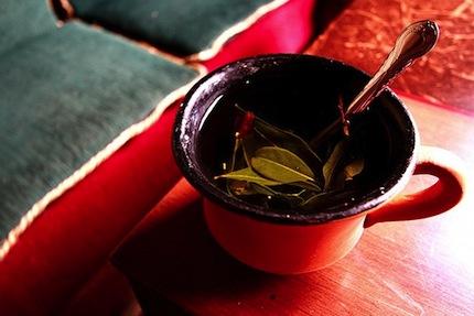 кока чай (430x287, 42Kb)