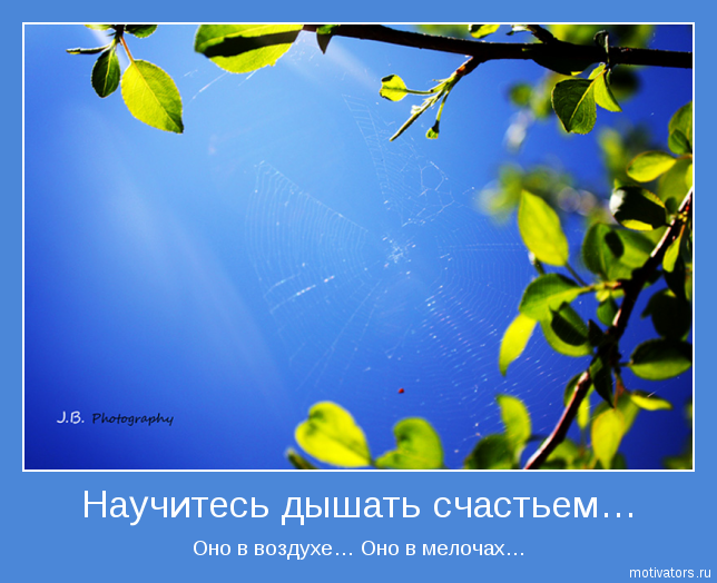 3841237_motivator16497_jpg (644x524, 397Kb) /></p>